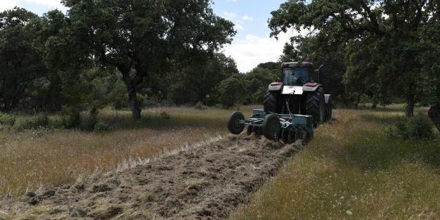 Los cortafuegos del monte de Boadilla se ponen a punto de cara al verano